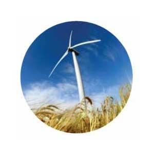 Promapp slider testimonial Lumo Energy